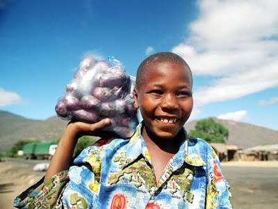 Selling purple potatoes roadside in Tanzania