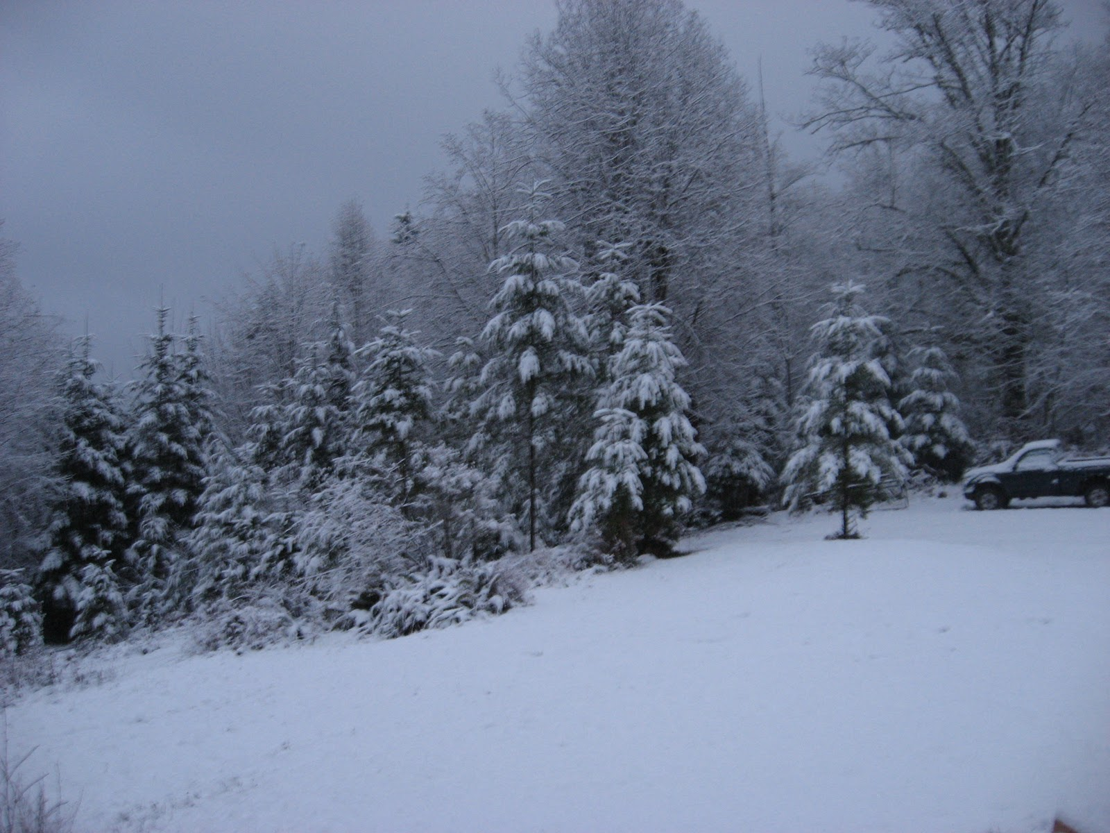Adventures Of The Kulla Klan: Real Snow