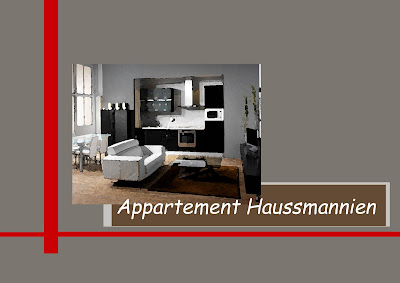 Cg Architecture Appartement Haussmannien