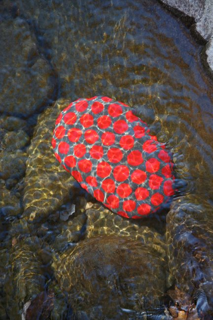 [red+dot+rock.jpg]