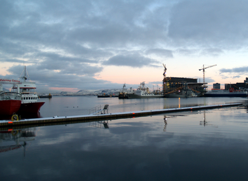 Islandsk valfangst ska sakra framtidens fiskenaring 3