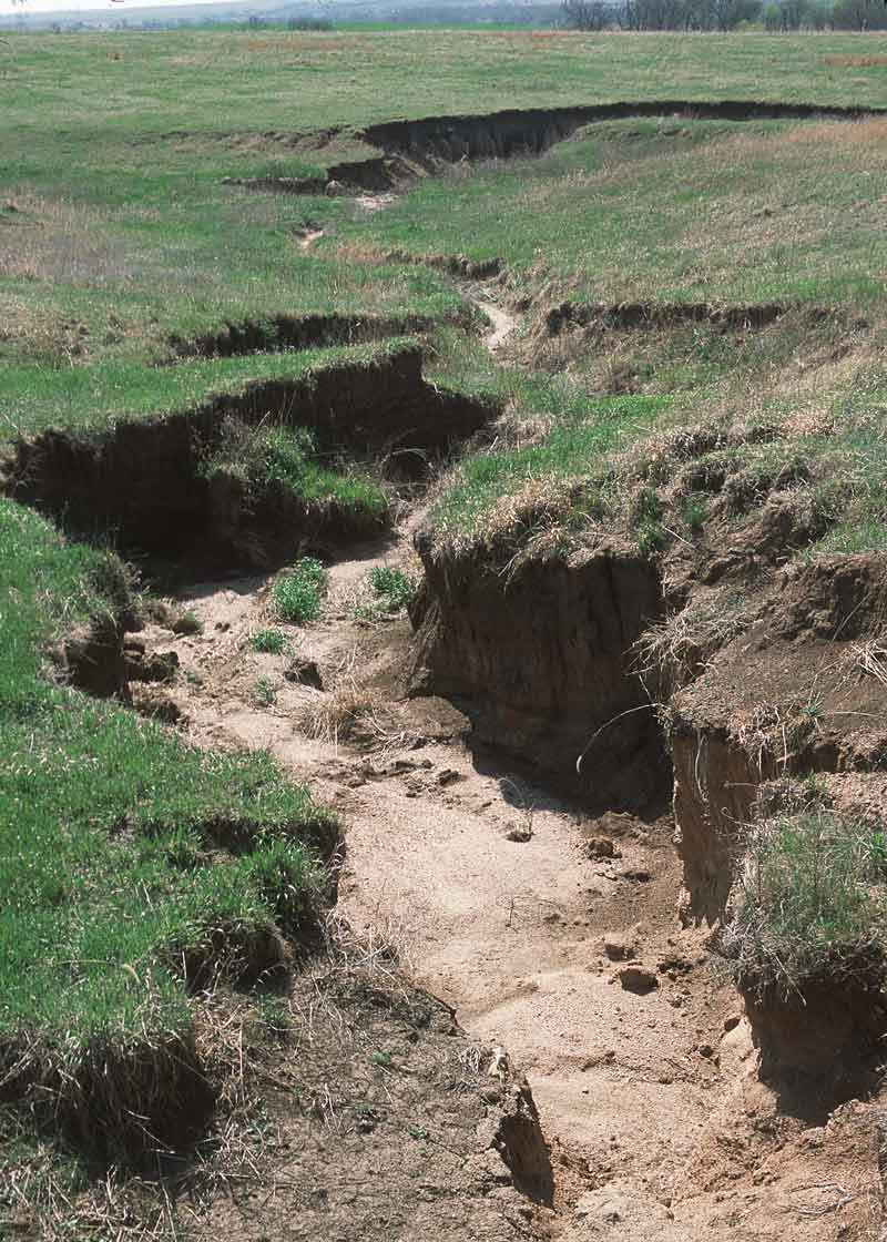 What is Water Erosion? - Ecomerge