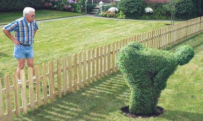 Image result for fuck you shrubbery