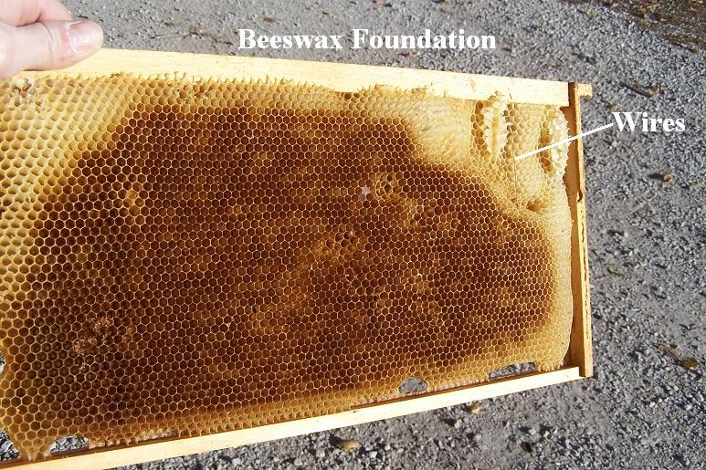 Superb Basic Beekeeping Lesson Thirteen Different Types Of Frame Foundation Wiring Cloud Hisonuggs Outletorg