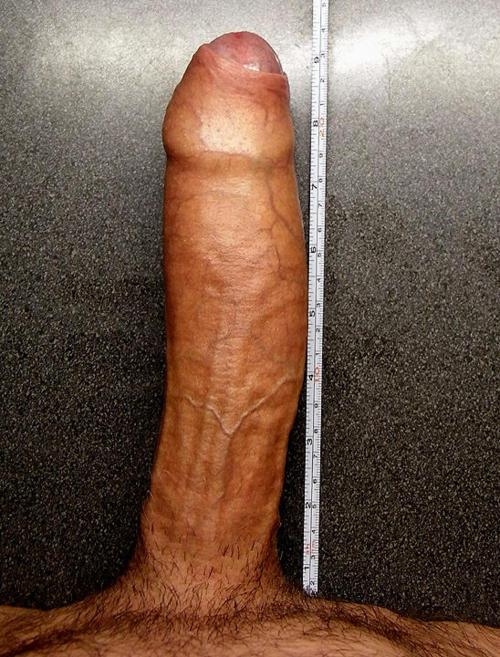 25 cm gay cock