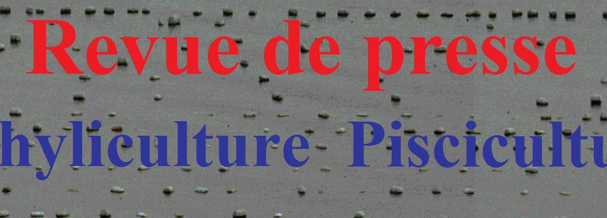 Revue presse 2011 5 Conchyliculture aquaculture pisciculture