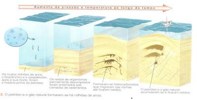 Ta Petro Com >> Tá Rolando uma Química: Energia!: Como o petróleo é formado?