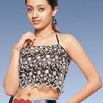 Hot Picture Of Trisha