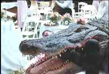 Tellyblogus Cinematicus Fantasticus: Film Review: Crocodile