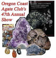 Photo of the Oregon beachcombers books (Agates of the Oregon Coast (pocket guide) and the Fossils of Western Oregon)among the following items of wire wrapped agate pendants, an Oregon fossil pectin shell, Oregon Petrified Wood, Brazilian Amethyst geode and a celestite crystal cluster