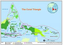 Coral Triangle Initiative (CTI)