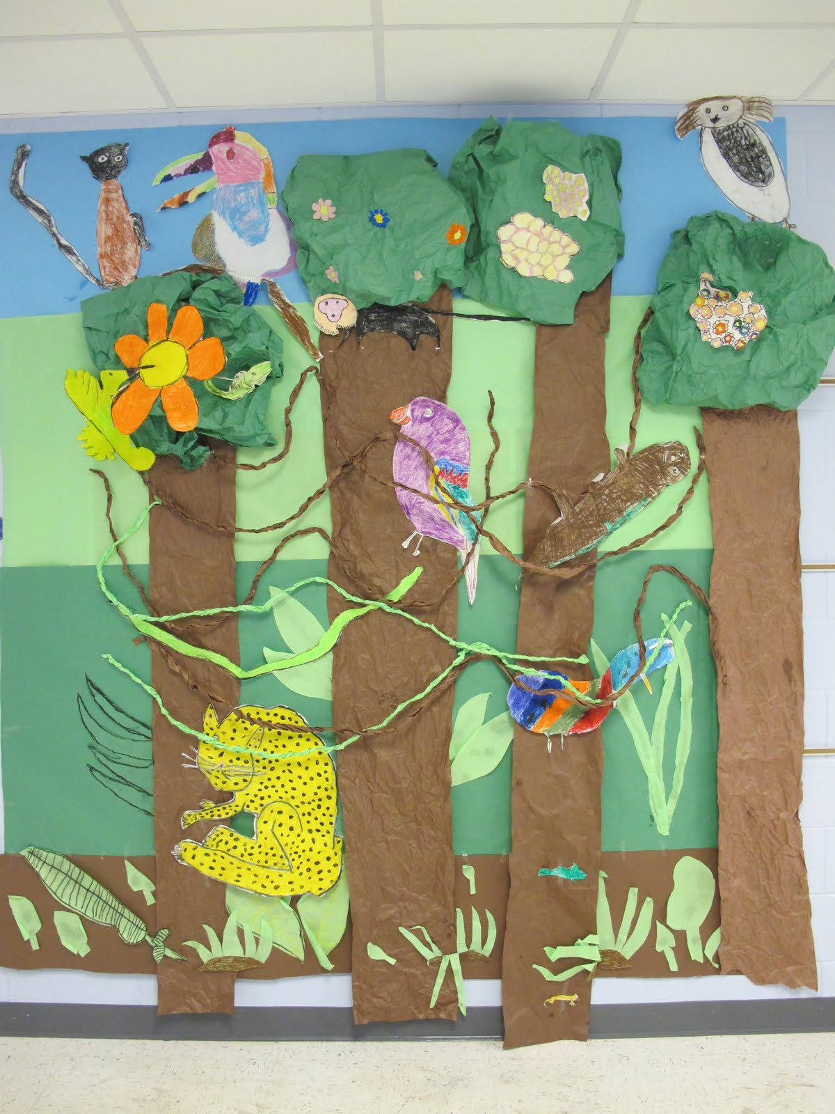 The Tillis Tribune Rainforest Layers