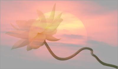 मंदिरों की शिलाओं में खोजो नहीं- राम शवरी के बेरों में मिल जायेंगे