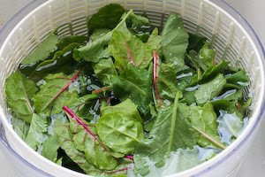 Spicy Stir-Fried Radish Greens and / or Swiss Chard found on KalynsKitchen.com
