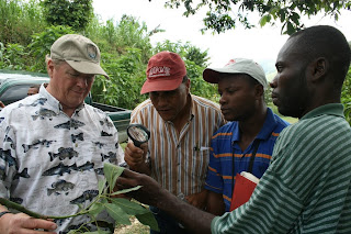 Avocado Specialist (hows that for a job title!), Bill Hahlbohm, and three of our technical staff members examine an avocado leaf for signs of pests.
