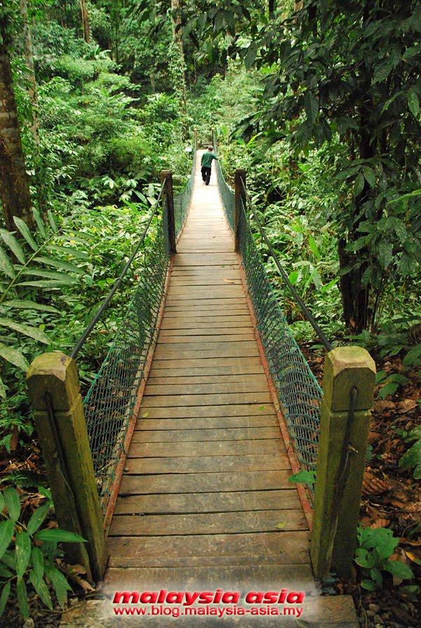 Rope Bridge RDC Sabah