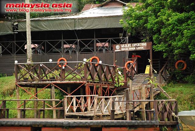 Eco Lodge at Kinabatangan River