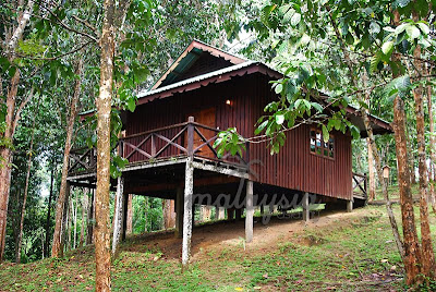 Chalet at Kinabatangan River