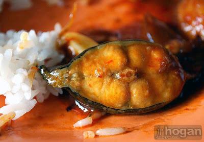 Kuala Selangor Seafood Photo