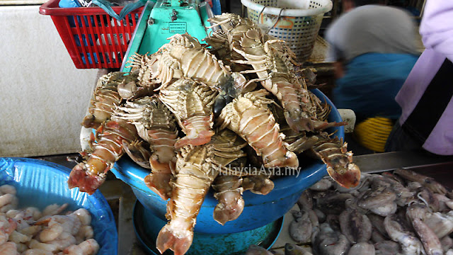 Sandakan Slipper Lobster