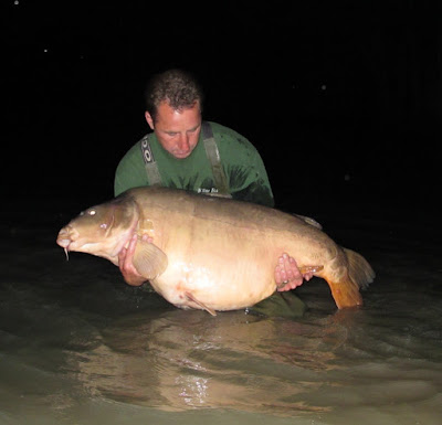 world record carp