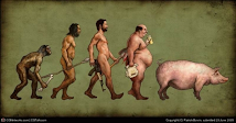 Evolução ou capitalismo?