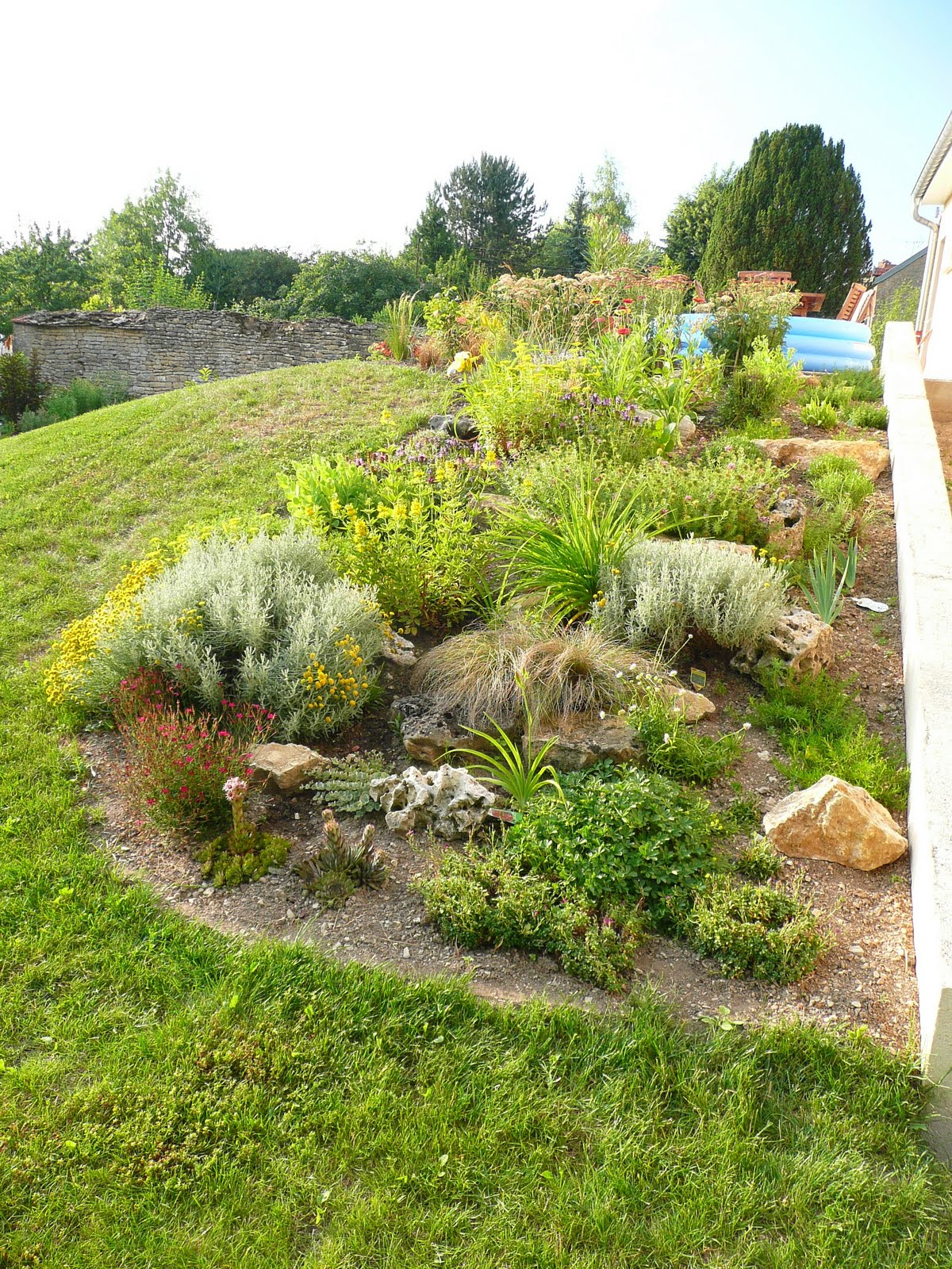 Notre jardin secret.: Rocaille en juillet