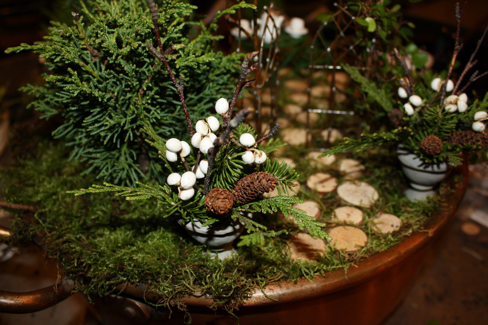 Teeny Tiny Woodland Winter Mixed Containers & A New Piece From Diana
