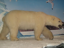 """THE DEADLY POLAR BEAR"""