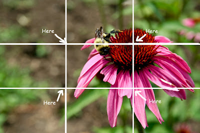 Rule of Thirds - Photography Composition Guidelines
