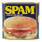 A origem da palavra Spam