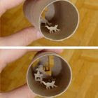 Arte com rolos de papel higiênico