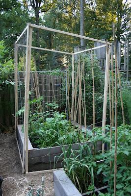Ideas and Inspiration for a Modern Vegetable Garden | SOW ... |Vegetable Garden Screen