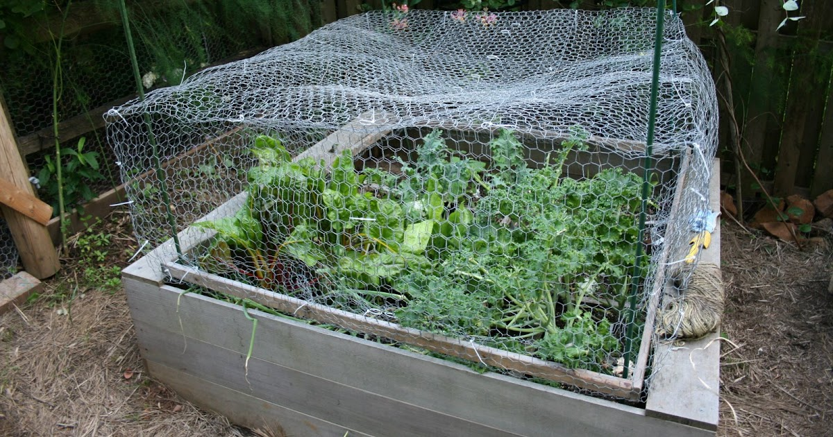 Heirloom Gardener How To Protect The Vegetable Garden