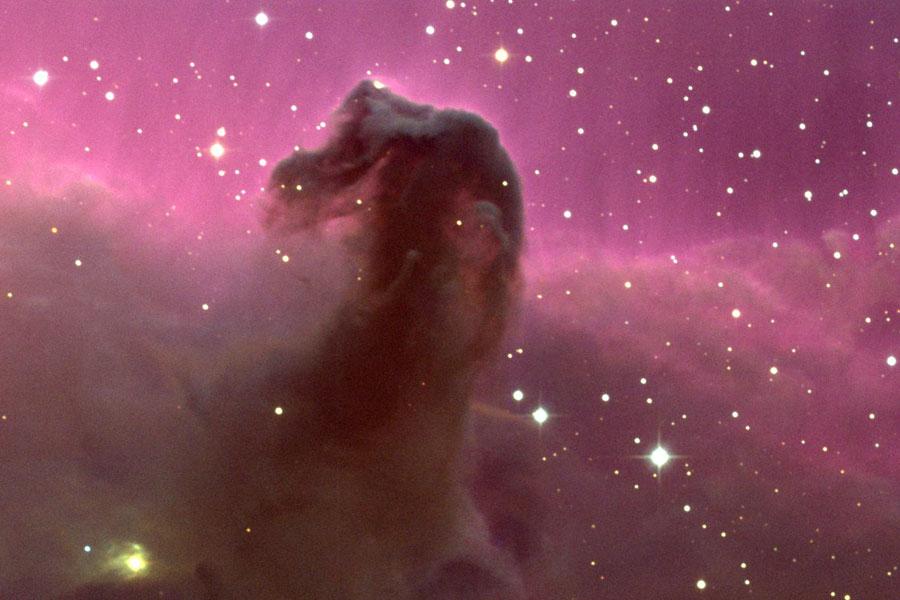 nebula in orion the horsehead nebula - photo #13