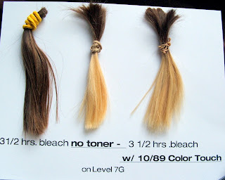 The Bleach Toy 8 Hair Swatches Lightened For Learning