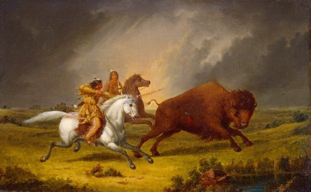 Buffalo Hunt by Paul Kane