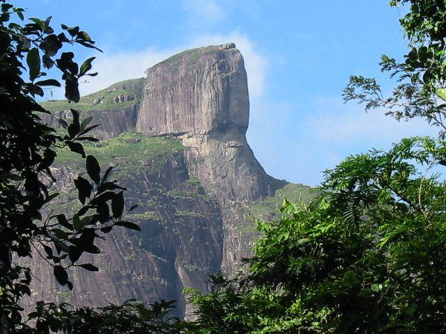 Aspectos Físicos e Biológicos do Parque Nacional da Tijuca
