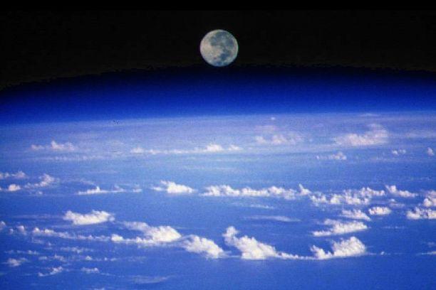 Teoria de Gaia