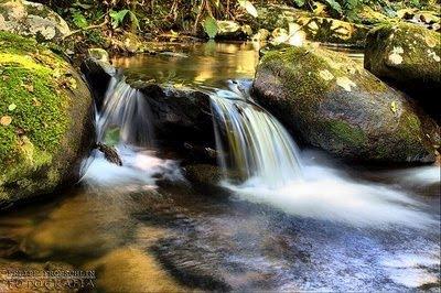 Parque Nacional das Nascentes do Rio Parnaíba