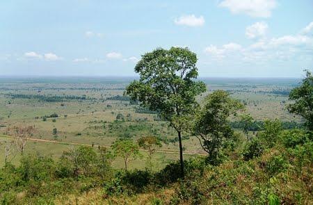 Parque Estadual da Serra dos Parecis   Rondônia