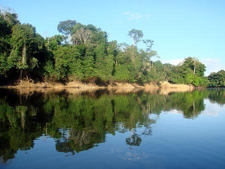 Rio Jamari