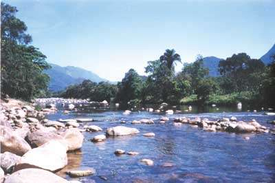 Área de Proteção Ambiental de Guaratuba | PR