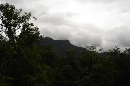 Parque Estadual Pico do Marumbi | Paraná