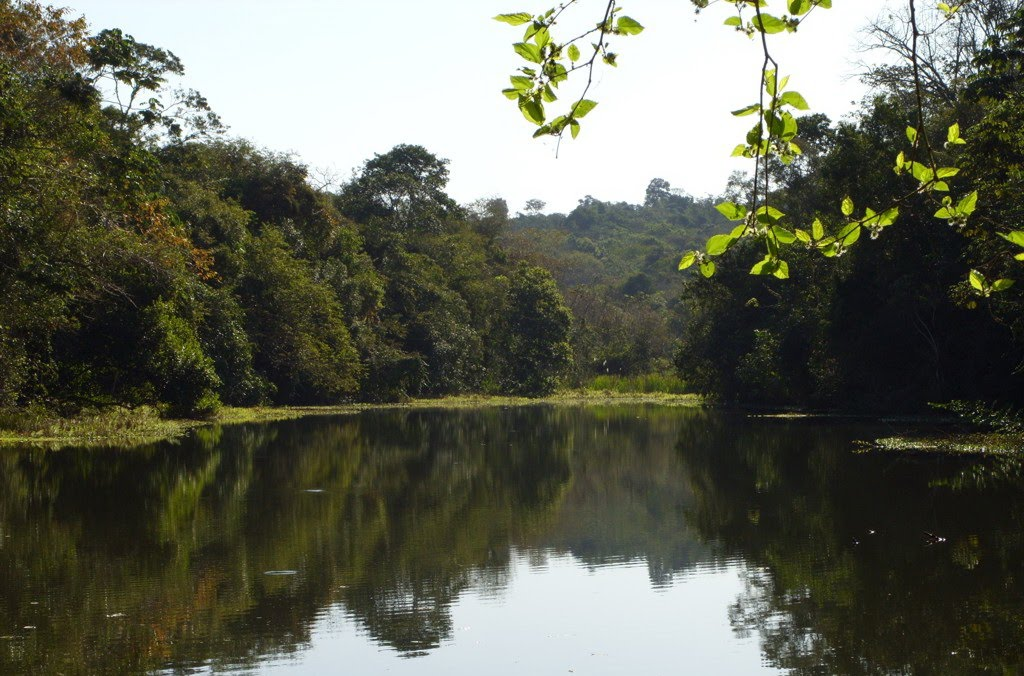 Parque Estadual Vila Rica do Espírito Santo   Paraná