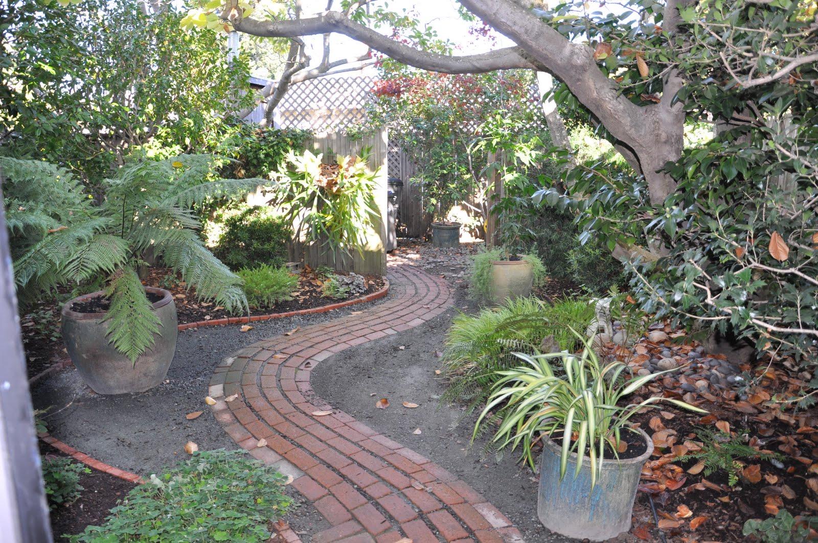 Fiddlehead Gardens: November 2009