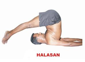 sri veeramaruthi yoga center halasana