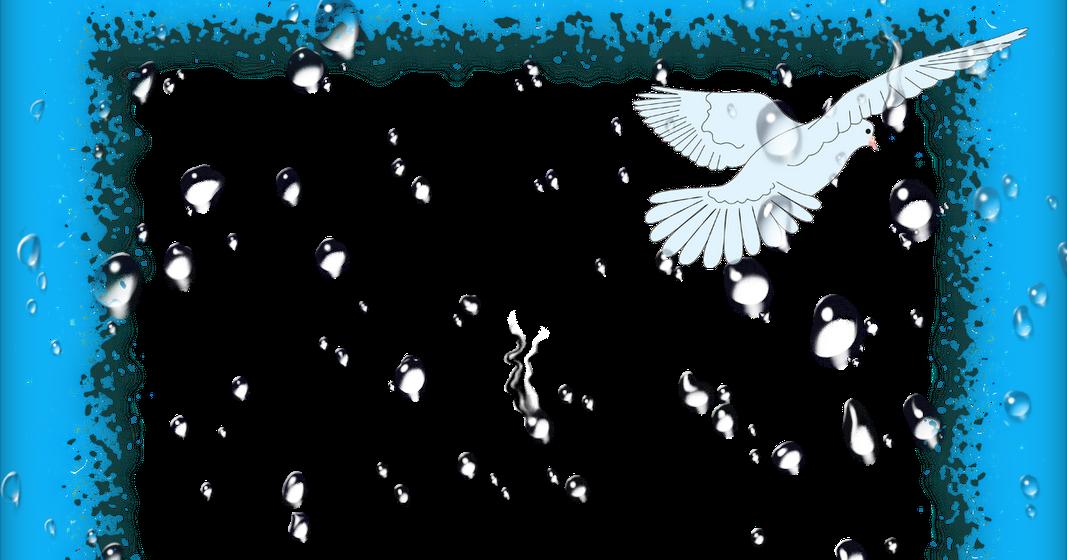 Molduras Digitais: Molduras Arca De Noé Do Amigo