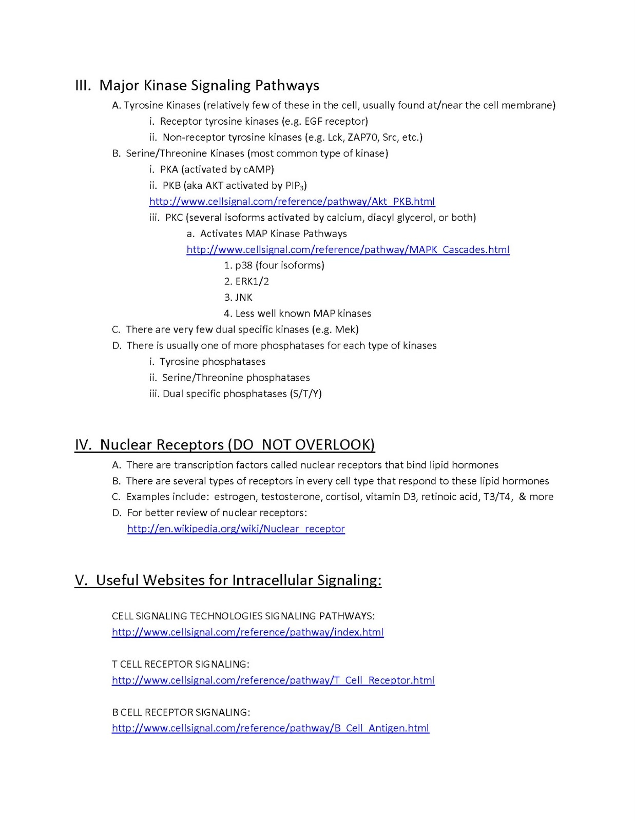 Nervous System Overview Page 6 Of 14 | Bed Mattress Sale