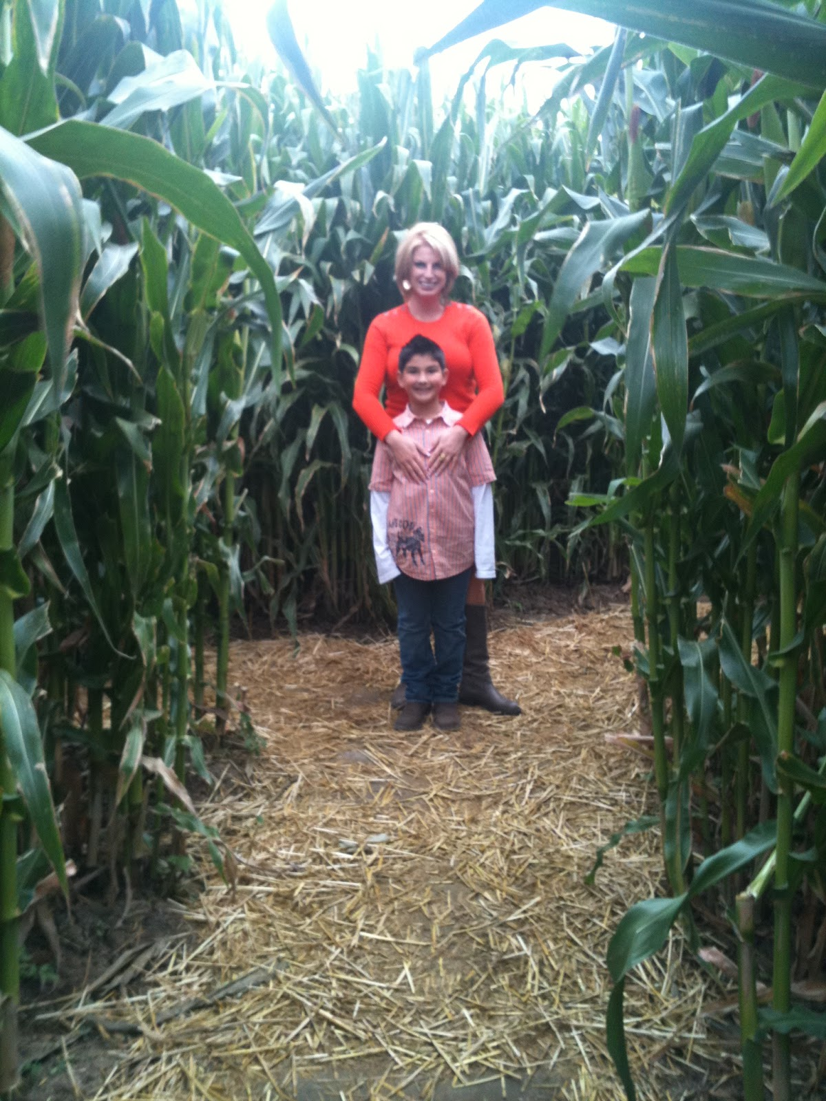 corn mazes and being thankful